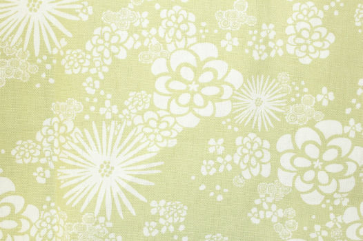 IN-STOCK: Wallflower / Sprout