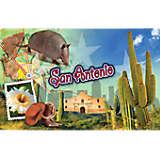 San Antonio Cactus