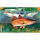 Guy Harvey® - Redfish