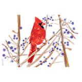 Cardinal Autism Awareness