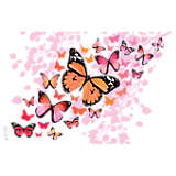 Pink Endless Butterfly