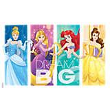 Disney - Dream Big Princess Group