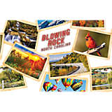 Blowing Rock Collage