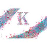 INITIAL-K
