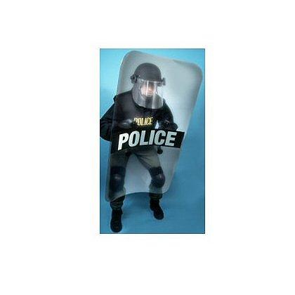 Paulson: Capture Shields