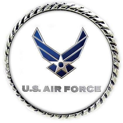 Son Sales Sublimated US Air Force Lapel Pin