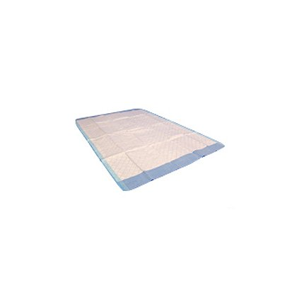 Taylor Healthcare Absorbent Underpad