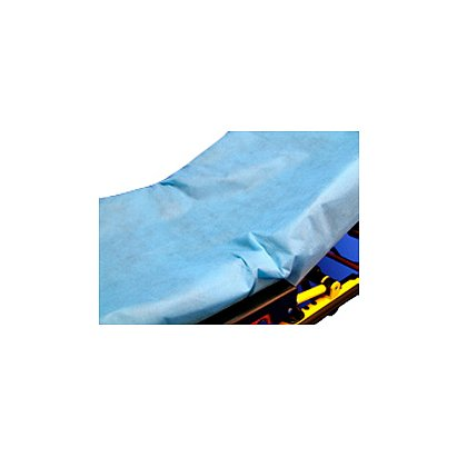 Taylor Healthcare: Sure Fit Disposable Sheets