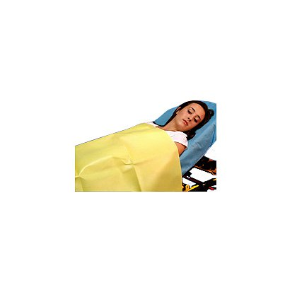 Taylor Healthcare: Yellow Emergency Blanket