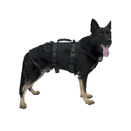 CMC: K9 Proseries® Rappel Harness