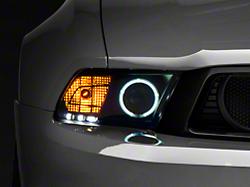 Raxiom Black Projector Headlights - CCFL Halo (10-12 GT, V6)