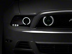 Raxiom Smoked Fog Lights - CCFL Halo (13-14 GT)