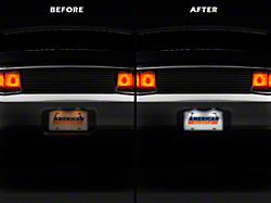 Raxiom License Plate Light LED Conversion Kit (10-14 All)