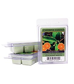 Cheerful Candle 6-Pack Sage & Citrus Fragrant Wax Melts