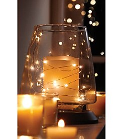Order Home Collection® 10' Silver LED String Lights