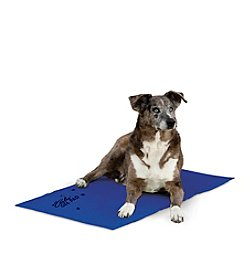 K&H Pet Products  Coolin' Pet Pad