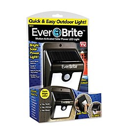 As Seen on TV Ever Brite™ Motion-Activated Solar Light