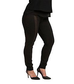 Standard & Practices Plus Size Cindy Sheer and Ponte Skinny Dress Pants