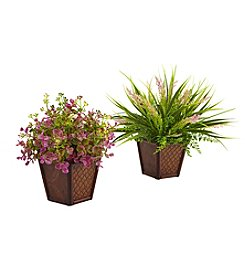 Nearly Natural® Set of 2 Assorted Grass with Planter