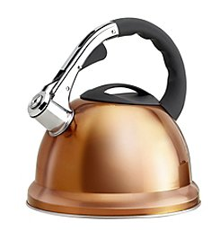 Epicurious 2.85-qt. Stainless Steel Whistling Teakettle