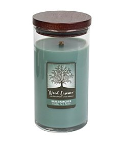 Wood Essence™ 17.5-oz. Bare Branches Candle