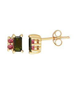 10K Yellow Gold with Pink Tourmaline Earrings