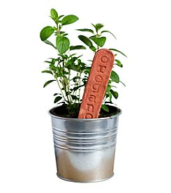 Mud & Maker Garden Markers Oregano
