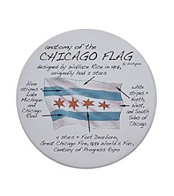 Dishique Anatomy of The Chicago Flag Coaster