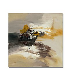 Trademark Global Fine Art Rio 'Abstract II' Canvas Art