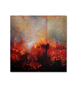 Trademark Global Fine Art Cody Hooper 'Red Earth' Canvas Art