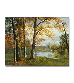 Trademark Global Fine Art Albert Biersdant 'A Quiet Lake' Canvas Art