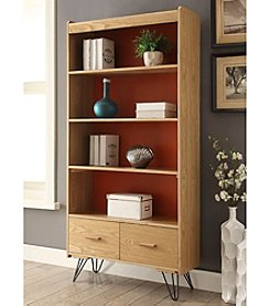 Linon Home Décor Products, Inc. Perry Bookcase with Drawer