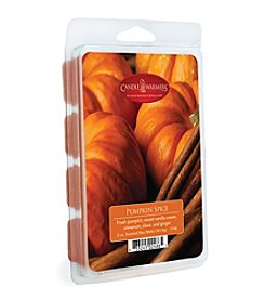 Candle Warmers Etc. 12-pack Pumpkin Spice Fragrant Wax Melts