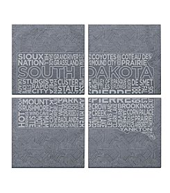 SPARQ Home 4-Piece South Dakota Coaster Set
