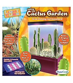 Dunecraft LED Light Cube Terrarium - Cactus Garden