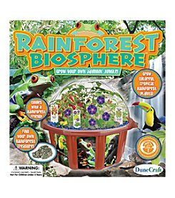 Dunecraft Dome Terrarium - Rainforest Biosphere