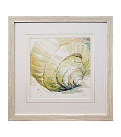 Star Creations Watercolor Conch Print