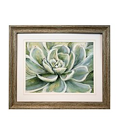 Star Creations Succulent Print