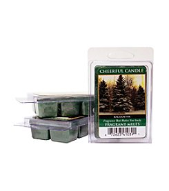 Cheerful Candle 6-Pack Balsam Fir Fragrant Wax Melts
