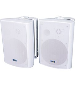 TIC Corporation 120-Watt Indoor/Outdoor Speakers, Set of 2
