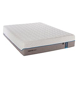 Tempur-Pedic TEMPUR-Cloud® Luxe Queen Mattress and Box Spring Set