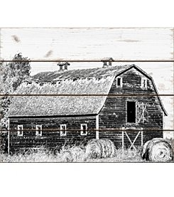 Artissimo Designs Barn and Hay Wall Art