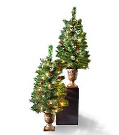 Living Quarters Set of 2 Pre-Lit LED 3.5'-Ft. Berry Pinecone Porch Trees