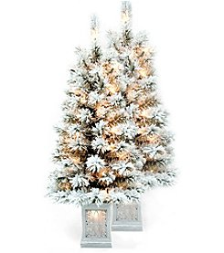 Living Quarters Set of 2 Pre-Lit LED 3.5'-Ft. Flocked Porch Trees