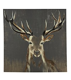 Artissimo Designs Young Buck Deer Wall Art