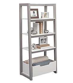 Delta Children Ladder Shelving