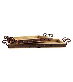 The Pomeroy Collection Telluride Set of Two Trays