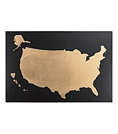 Sterling Metallic USA Map Wall Decor