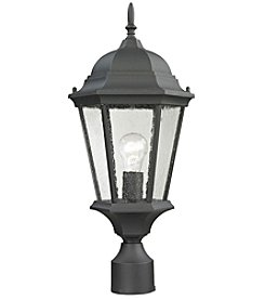 Thomas Temple Hill 1-Light Outdoor Pendant
