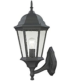 Thomas Temple Hill 1-Light Outdoor Wall Sconce